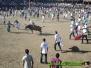 Montaderas Fiestas Civicas Liberia 2011